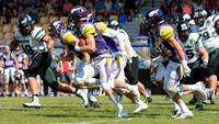 20150705 Vienna Vikings vs. Danube Dragons